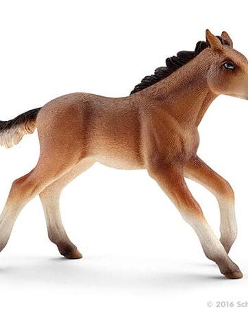Zdjęcie Schleich - Farm World - Mustang źrebię - producenta SCHLEICH